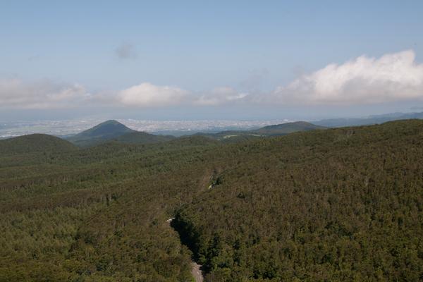 Hakkoda-Fahrt mit Wald und Aomori im Hintergrund