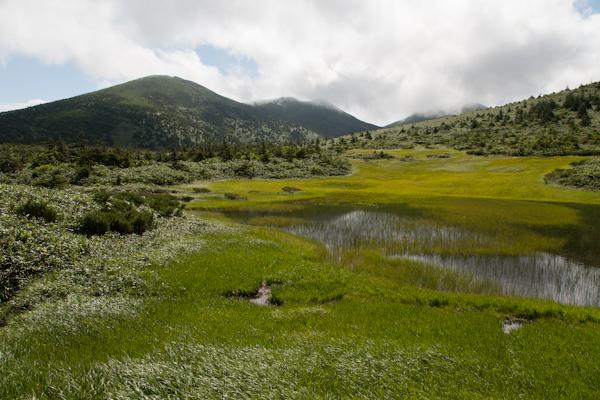 Hakkoda Wetlands 2